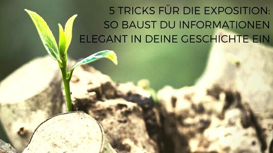 5-tricks-fu%cc%88r-die-exposition